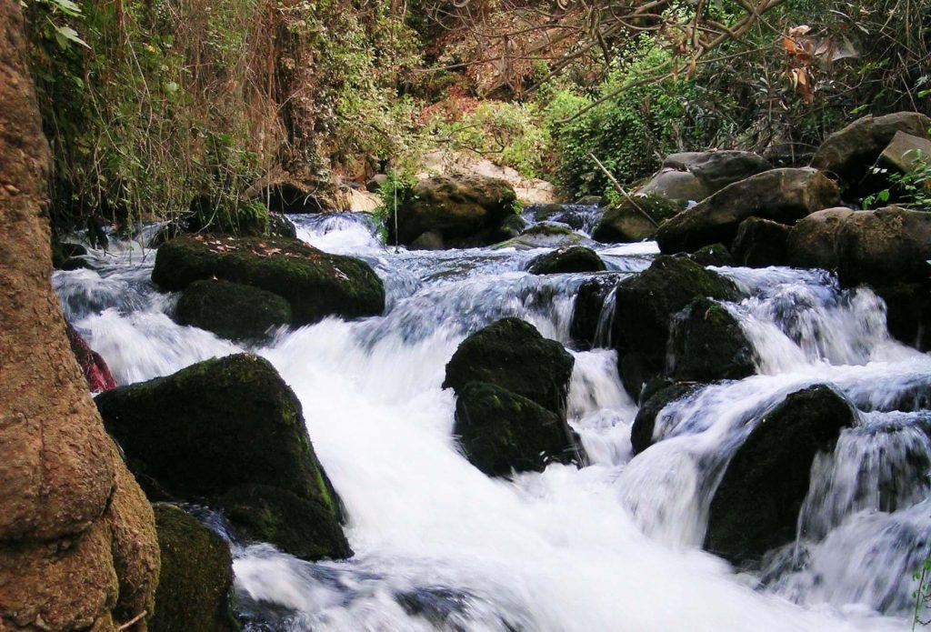 ヨルダン川源流